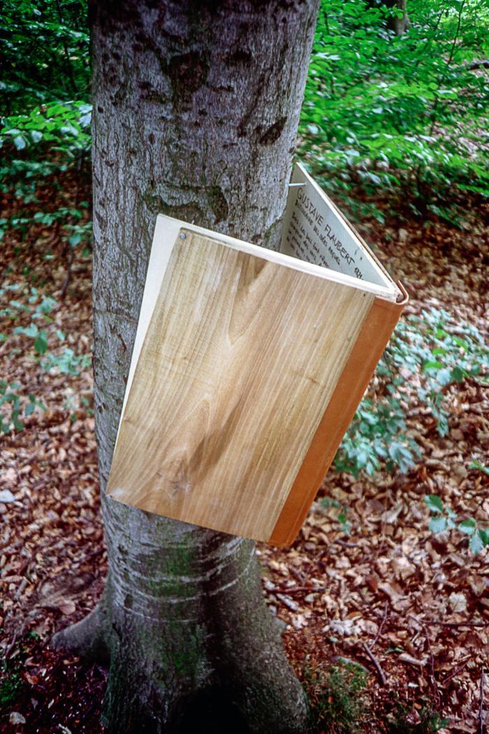 Fried Rosenstock: Dem deutschen Wald zulesengeben