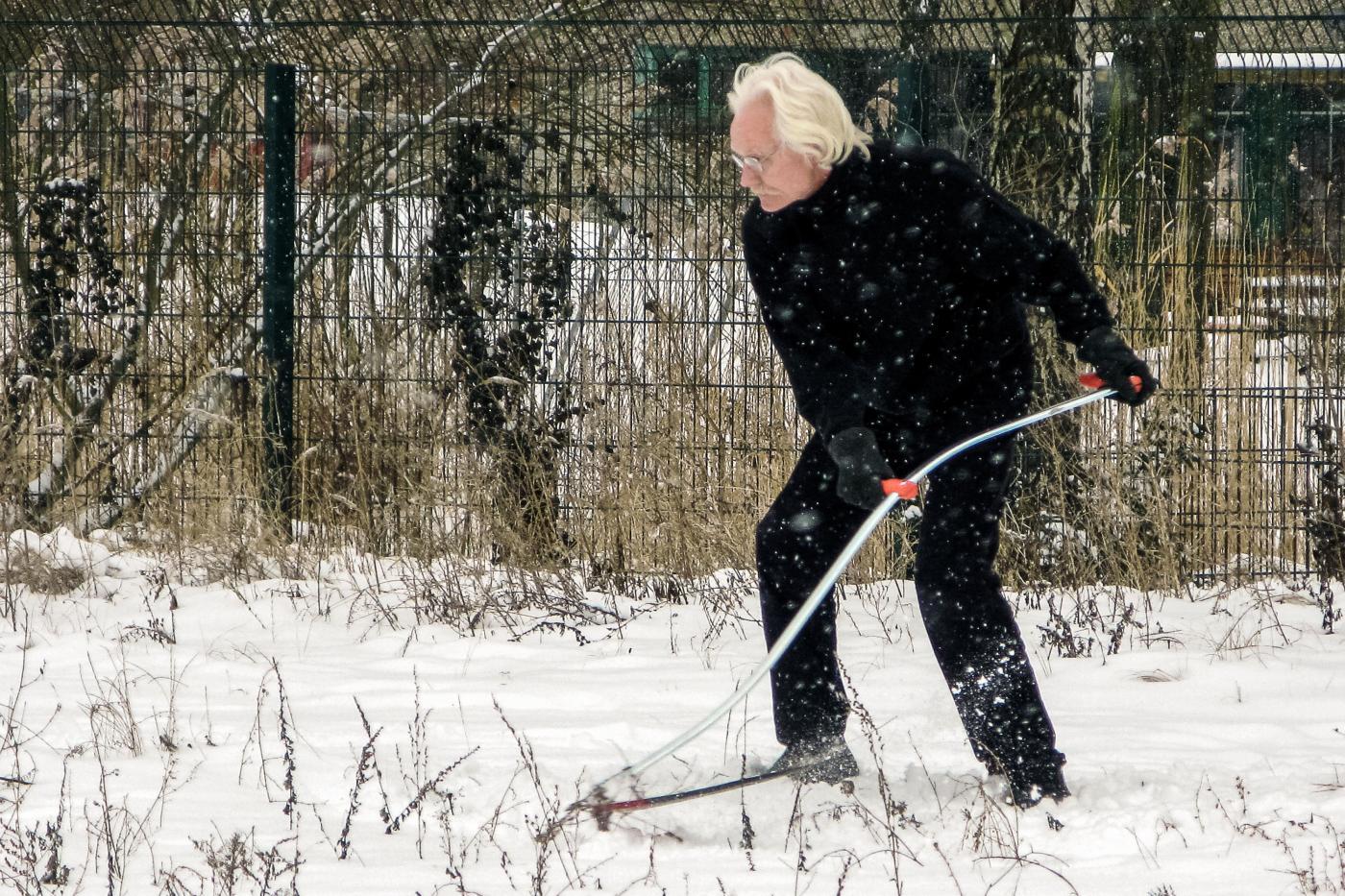 Fried Rosenstock: Winterschnitt